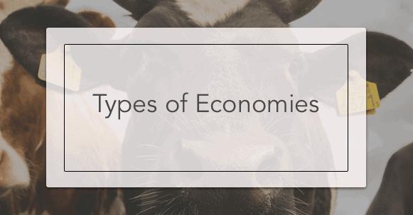 The Four Types of Economies | Intelligent Economist