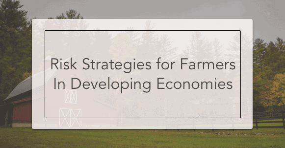 risk strategies for farmers
