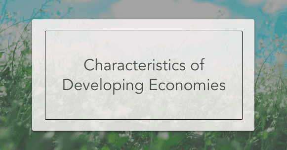 characteristics of developing economies