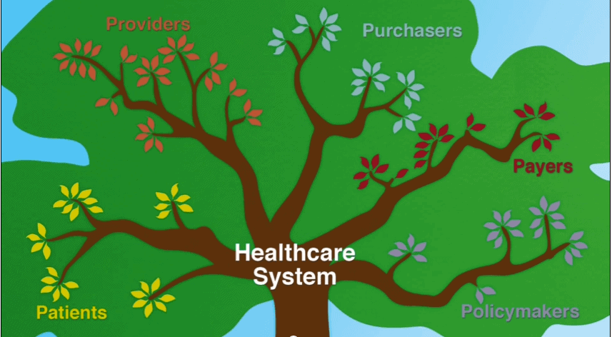 The 5 Major Branches of the US Healthcare System