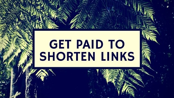 Paid Short Links