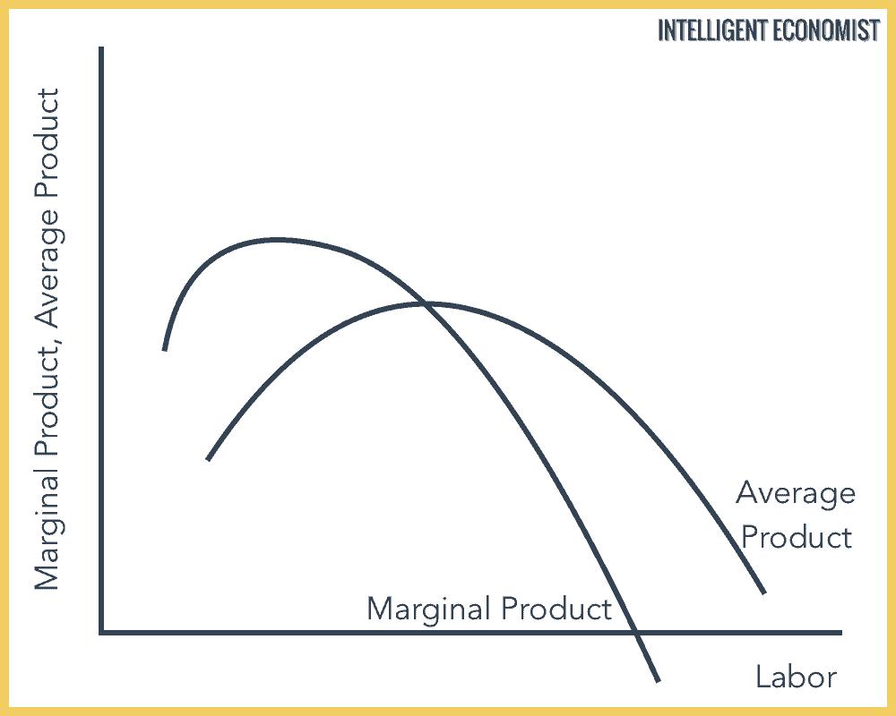 Average Product, Marginal Product