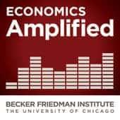 Economics Amplified