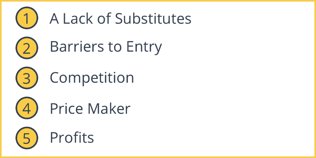 Characteristics of a Monopoly Market Structure