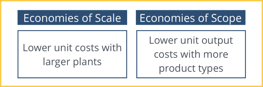 Economies of Scale vs. Economies of Scope